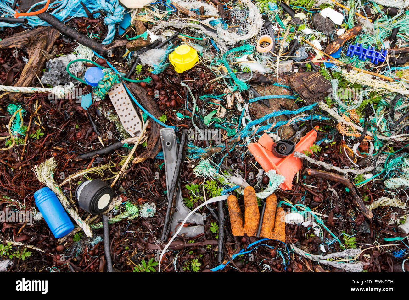 Plastic rubbish washed ashore on Rubha Coigeach in Assynt, Scotland, UK. - Stock Image