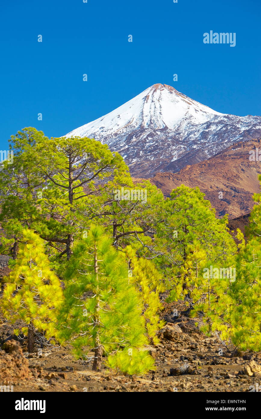 El Teide Mount, Tenerife, Canary Islands, Spain - Stock Image