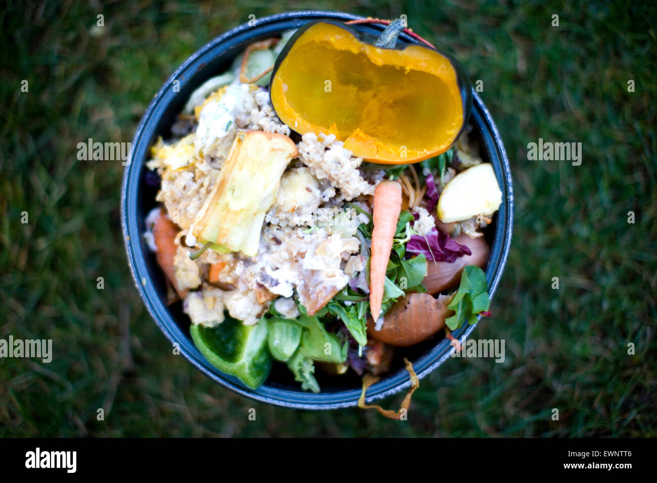 Close up image of a household compost bucket with organic material inside - Stock Image