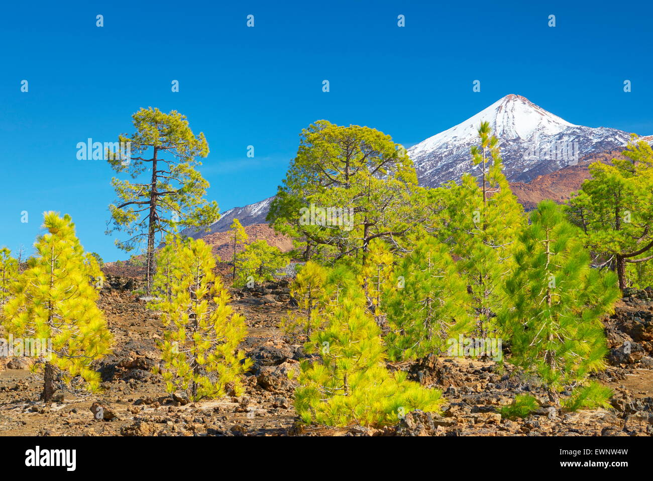 Tenerife - view of Teide Mount, Canary Islands, Spain - Stock Image