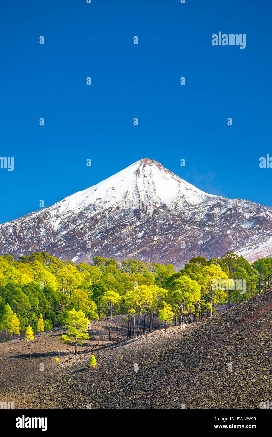 View of Teide Mount, Canary Islands, Tenerife, Spain - Stock Image