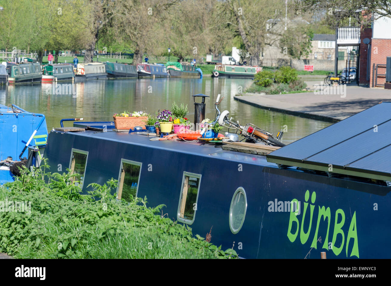 Pot plants and a bike on top of a narrow boat on the River Cam, Cambridge, UK - Stock Image