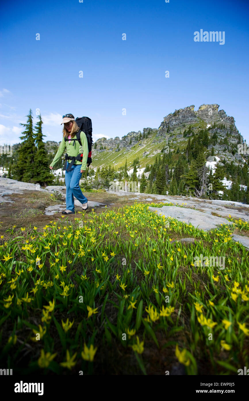 Woman backpacking in a wilderness area under a bright blue sky. Stock Photo
