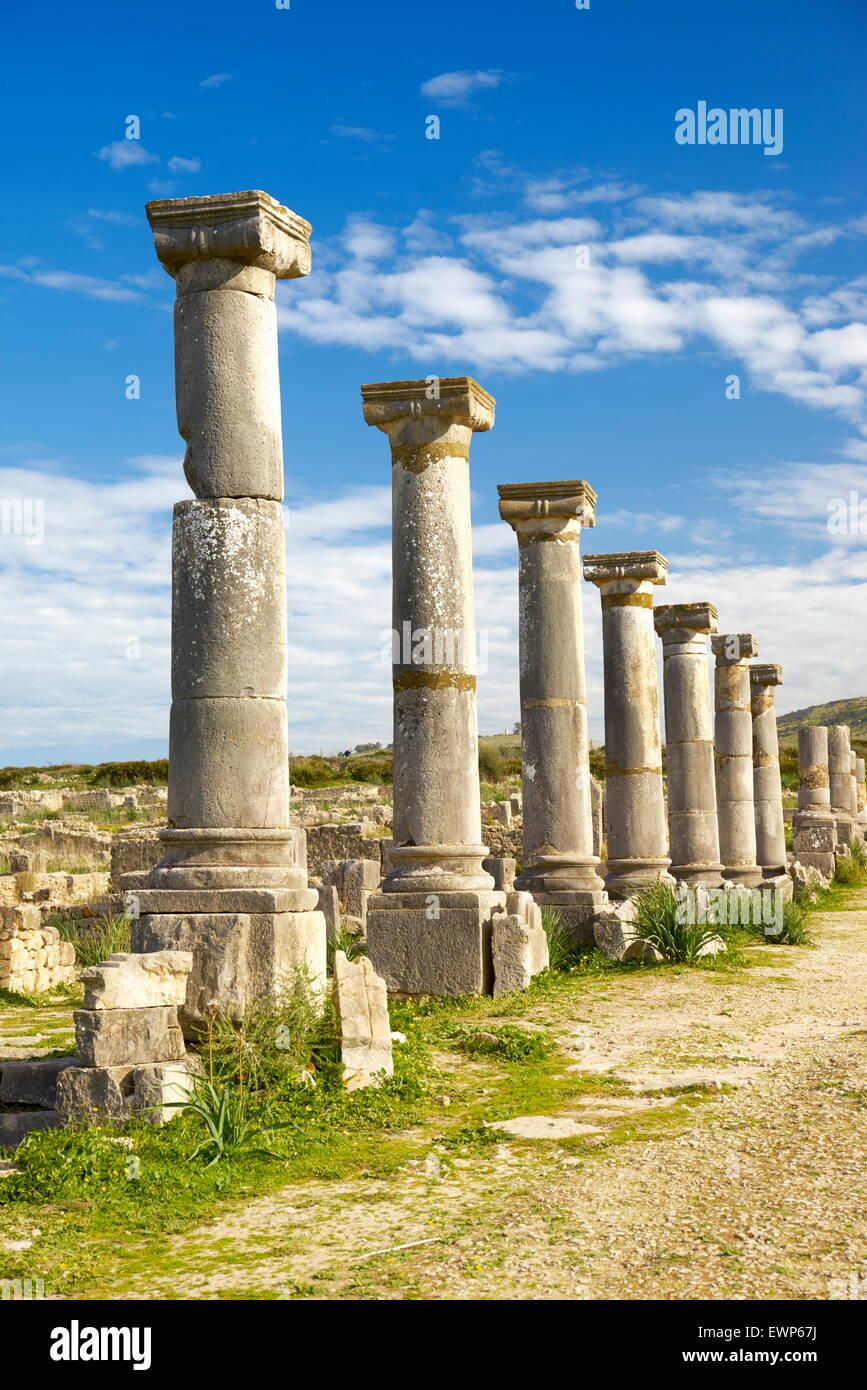 Volubilis, ancient Roman city in Zerhoun Mountains, near Fes. Morocco - Stock Image