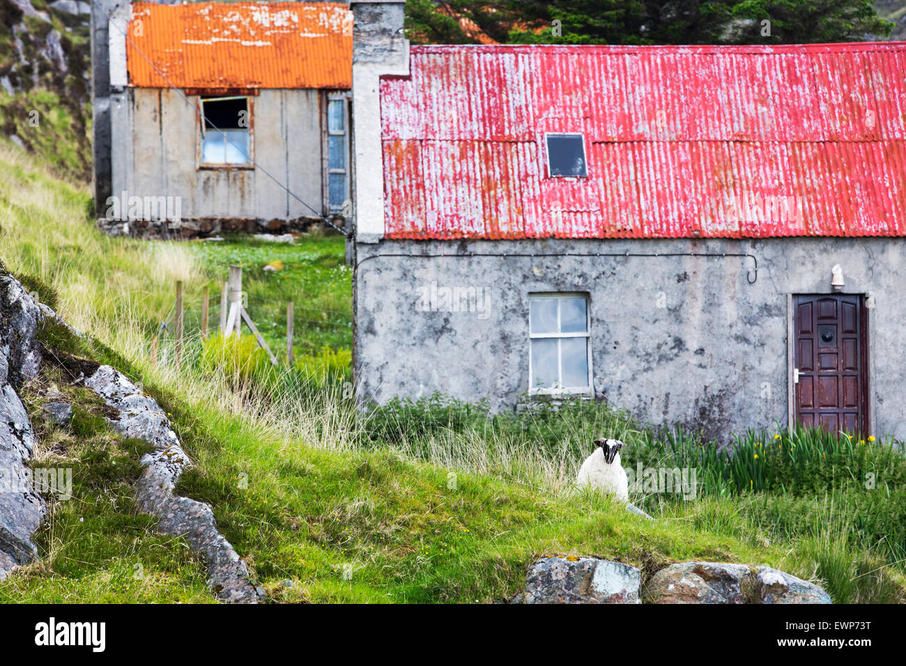Abandoned old croft house on the Golden Road on the East side of the Isle of Harris, Outer Hebrides, Scotland, UK. - Stock Image