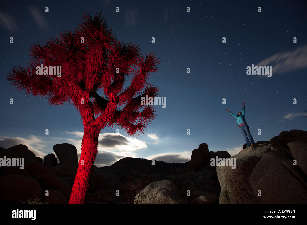 A woman reaching to the sky near a glowing red tree in the desert at night. - Stock Image