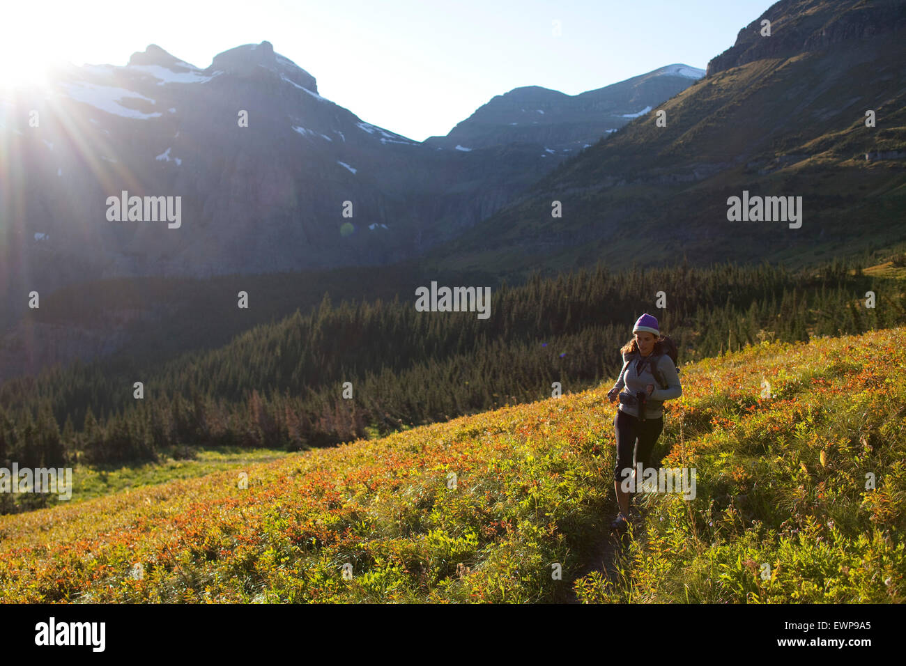A woman trail running in the high country. - Stock Image