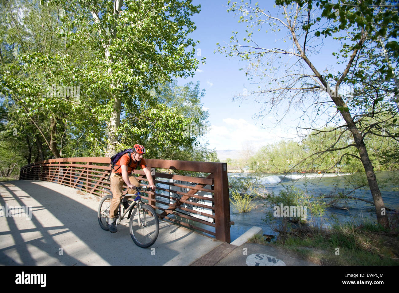 Bicycle commuter on crossing bridge on greenbelt - Stock Image