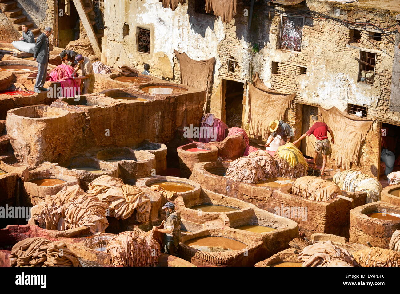 Traditional leather Chouwara Tannery, Fez medina, Morocco, Africa - Stock Image