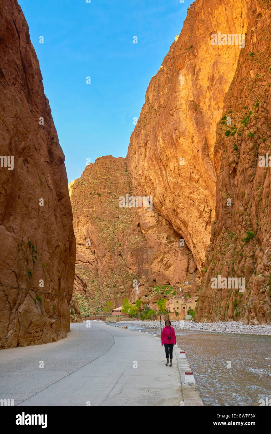 Gorges du Todgha, Tinghir, Morocco, Africa - Stock Image