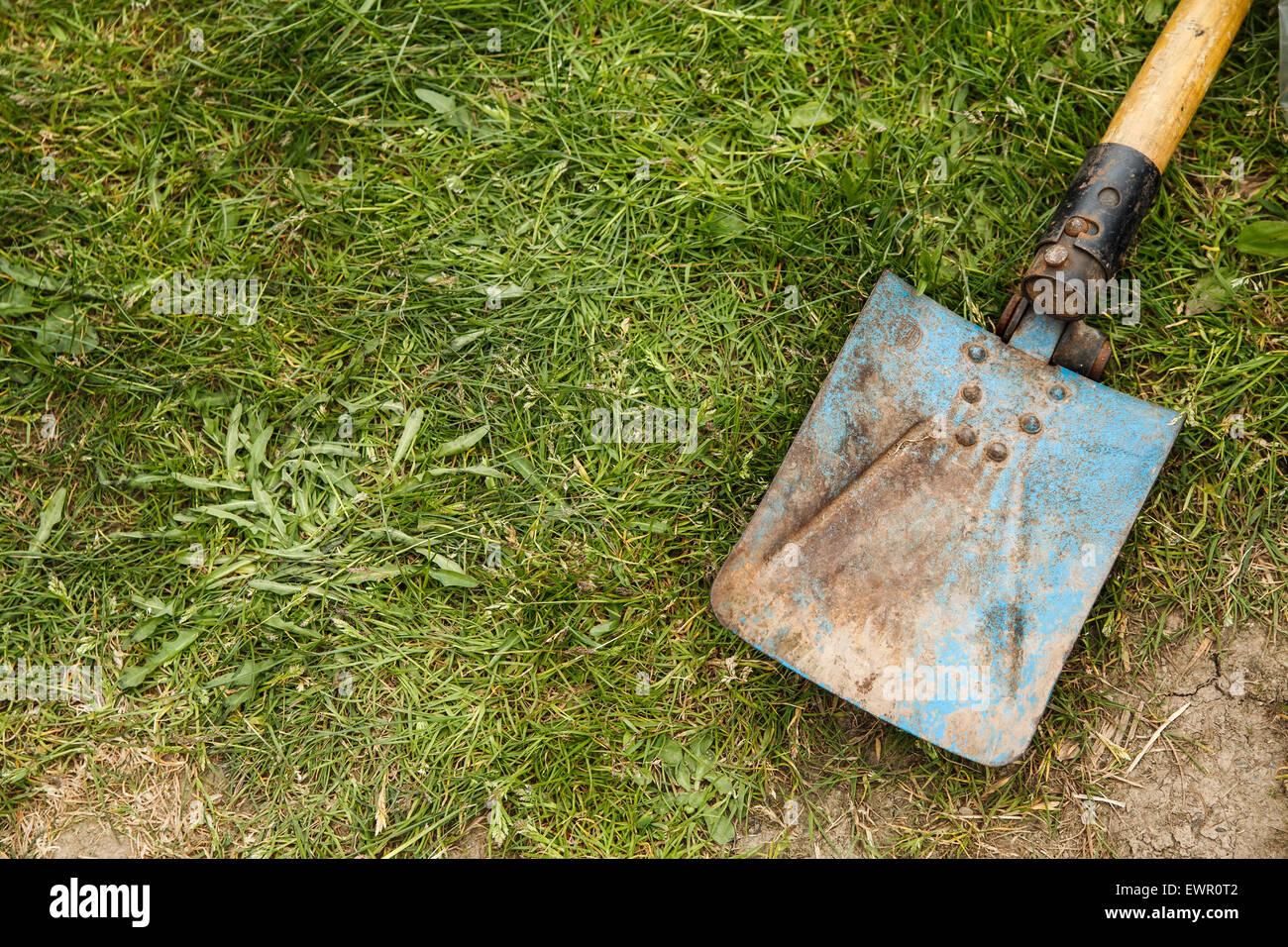 Blue rusty spade on grass - Stock Image