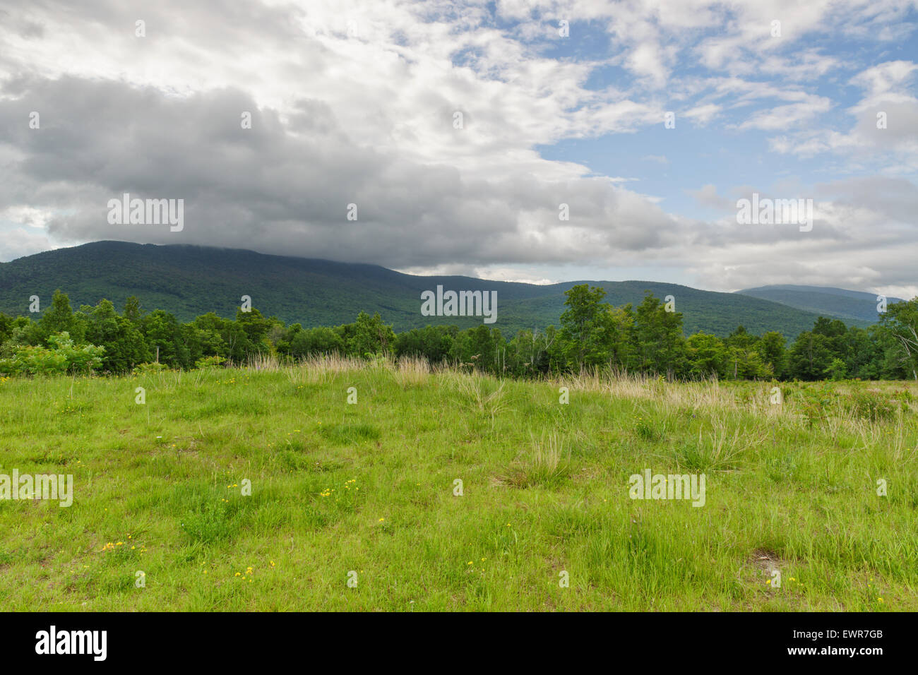 Breezy Point in Warren, New Hampshire USA during the summer months. These fields were once the site of 19th century - Stock Image