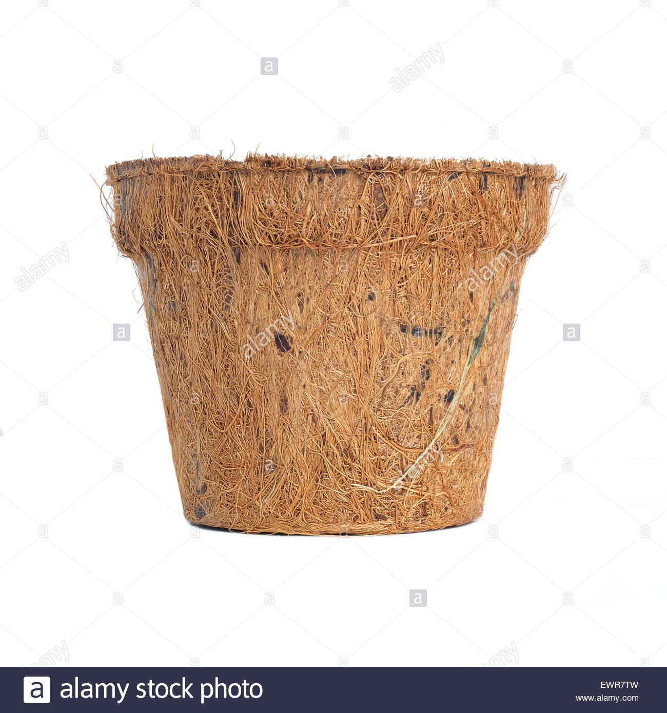 Biodegradable plant pot made from coconut husk, isolated on white background - Stock Image