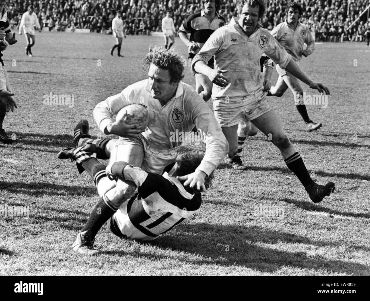 Phil Llewellyn of Swansea RFC. 27th March 1978. - Stock Image