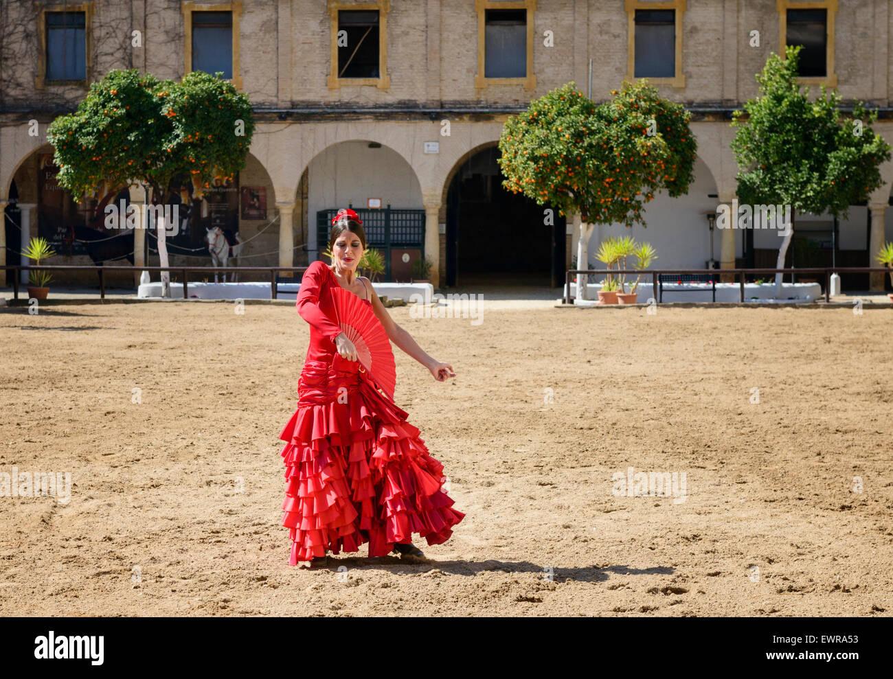 Flamenco Dancer at Royal Stables Córdoba - Stock Image