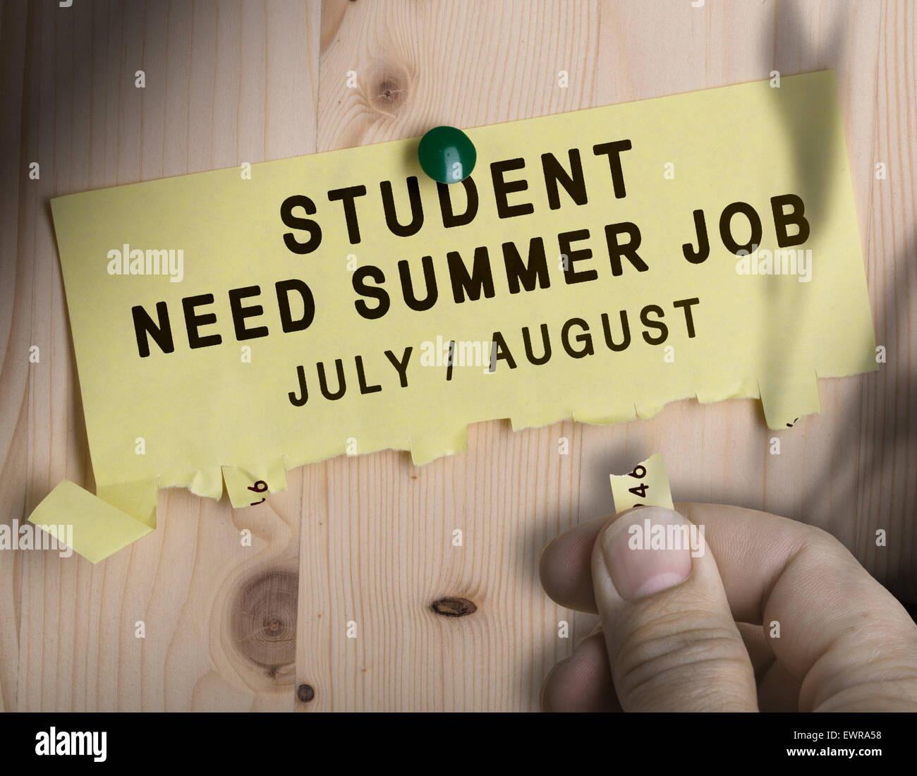Tear off not with the text student need summer job over wooden background - Stock Image
