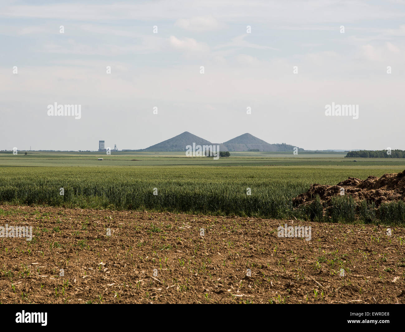 """The remains of the """"Double Crassier"""" of the 1915 battle of Loos seen from near the Hohenzollern Redoubt Stock Photo"""