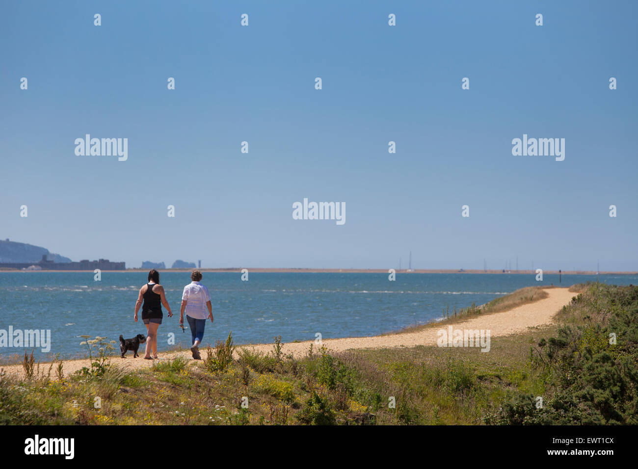 Dog Walkers on the Solent Way between Lymington and Keyhaven - Stock Image