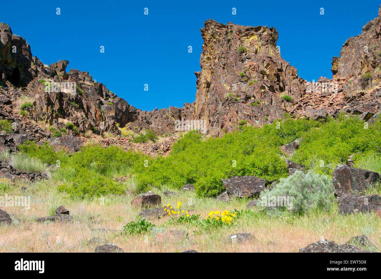 Horsethief Butte cliffs, Columbia Hills State Park, Columbia River Gorge National Scenic Area, Washington - Stock Image