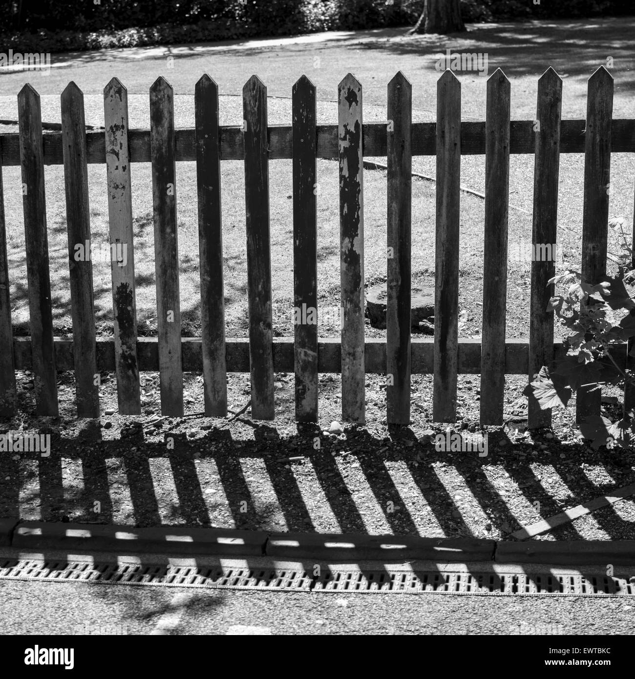 Wooden fence and shadow - Stock Image
