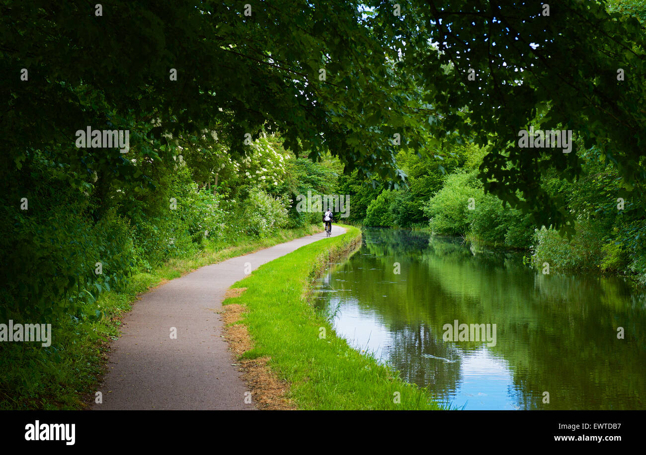 Cyclist on towpath of the Lancaster Canal, near Lancaster, England UK Stock Photo