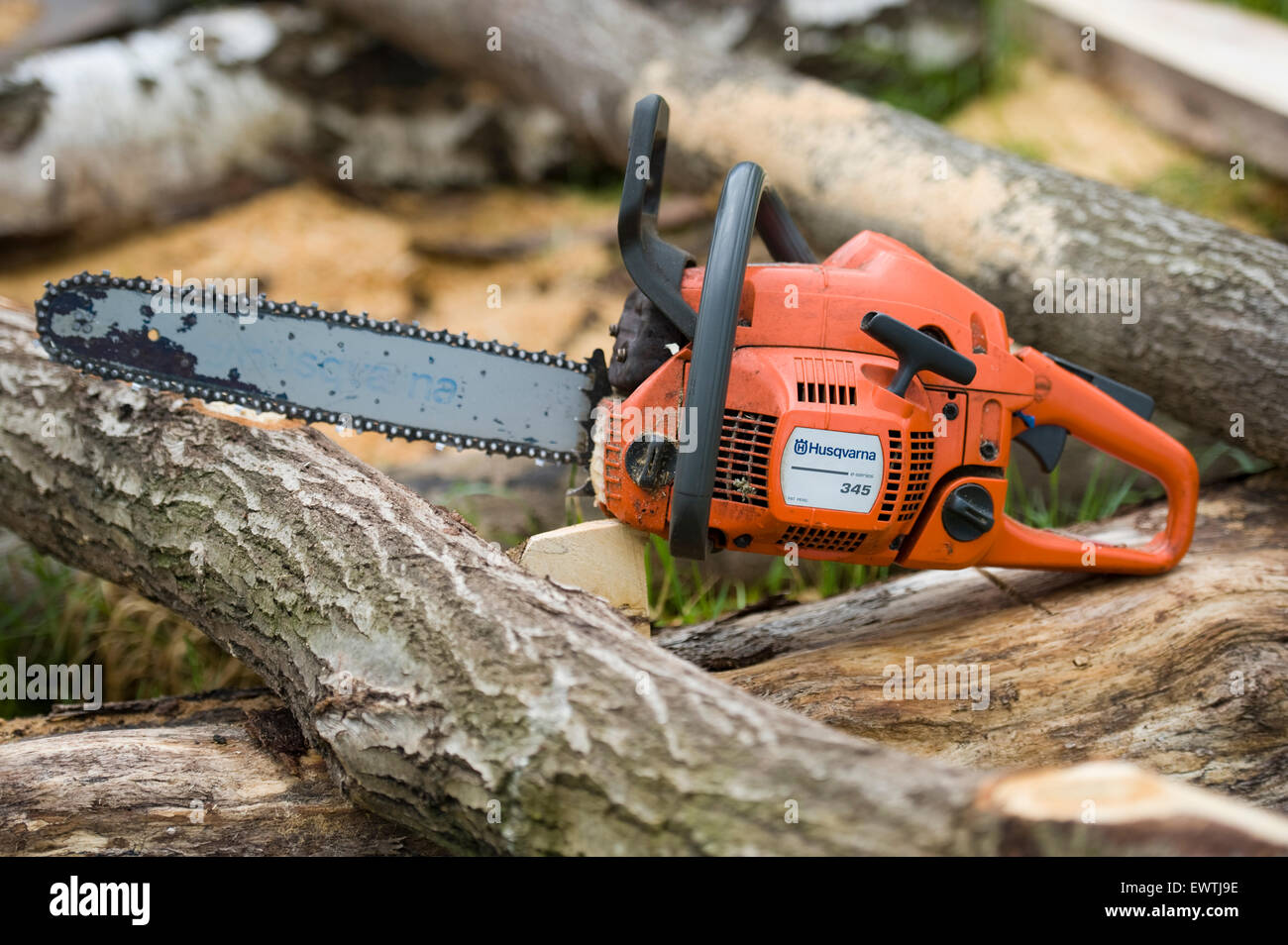 Used Husqvarna 345 chainsaw set down on a pile of cut logs after felling and cutting trees. Photography by Becky - Stock Image