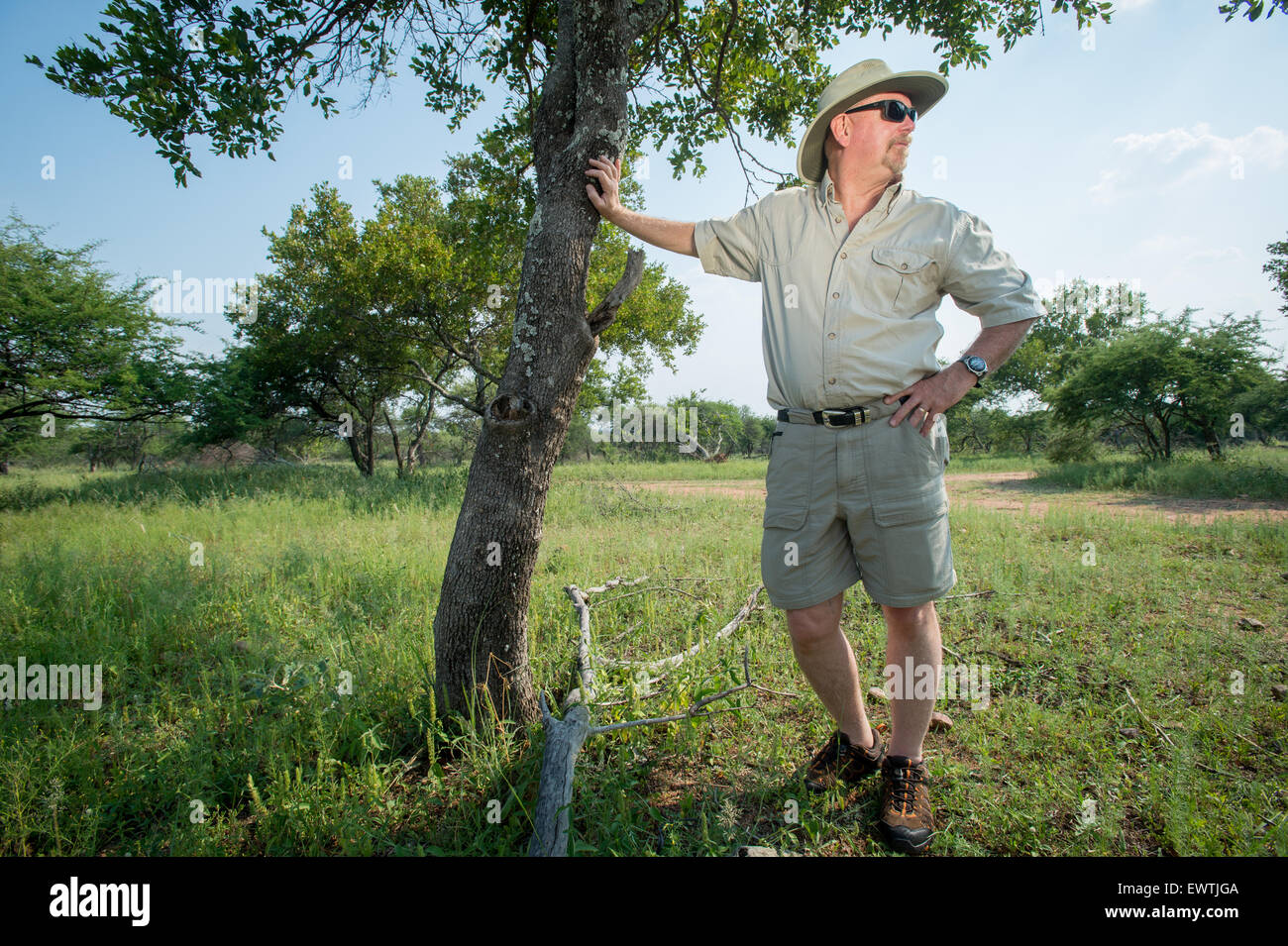 SOUTH AFRICA- Safari man posed by tree - Stock Image