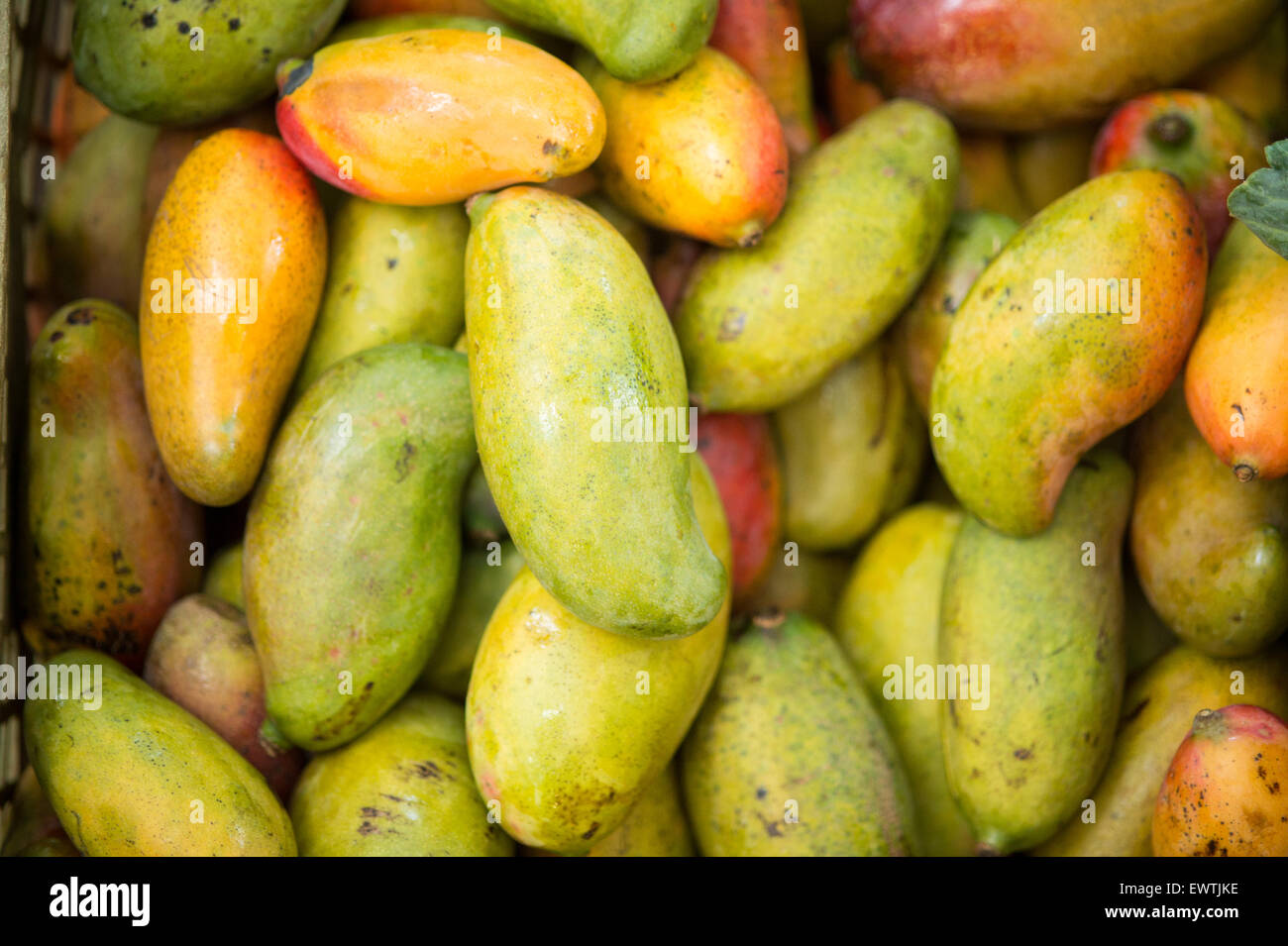 SOUTH AFRICA- Pile of fresh fruit at a farmers market in Pretoria - Stock Image