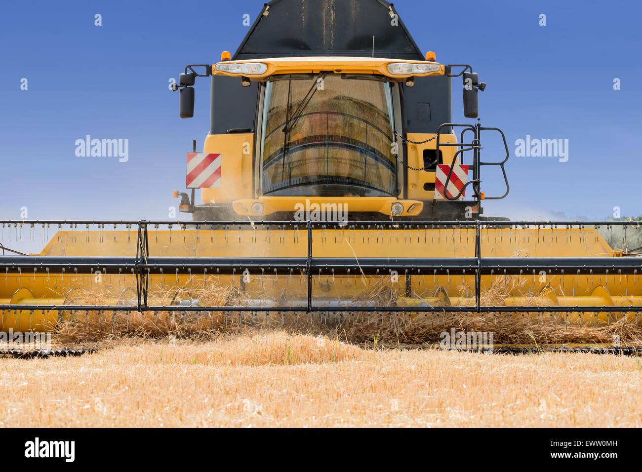 close front view of modern combine harvester in action. - Stock Image