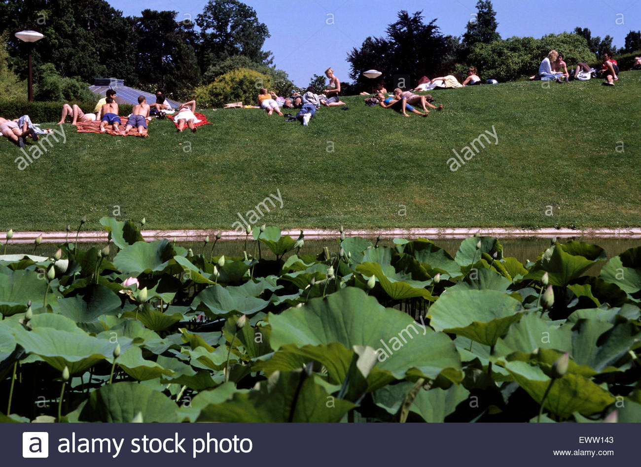 Floral park of Vincennes, Paris. - Stock Image