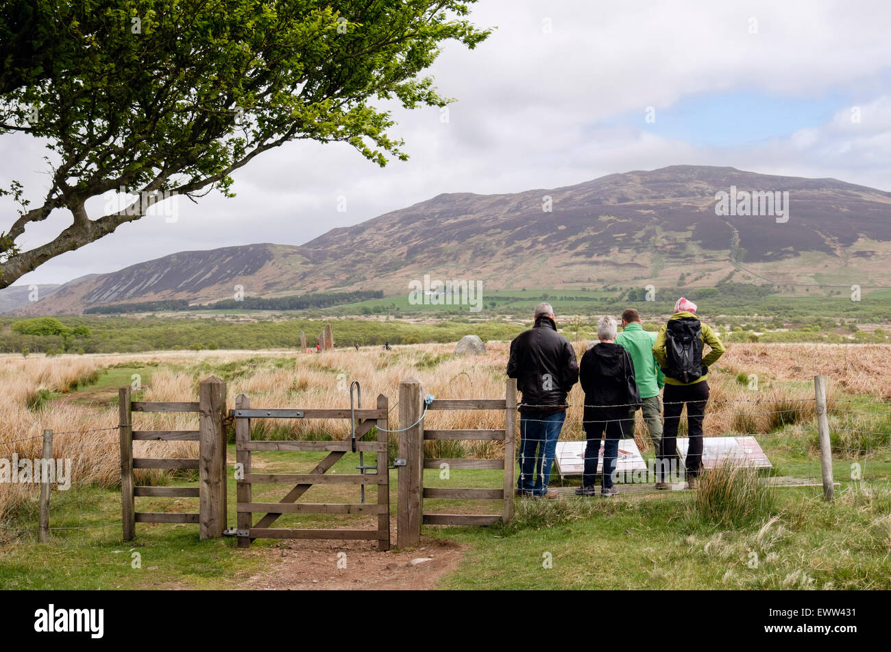 Visitors reading information boards for Machrie Moor stone circles on Isle of Arran, North Ayrshire, Strathclyde, - Stock Image