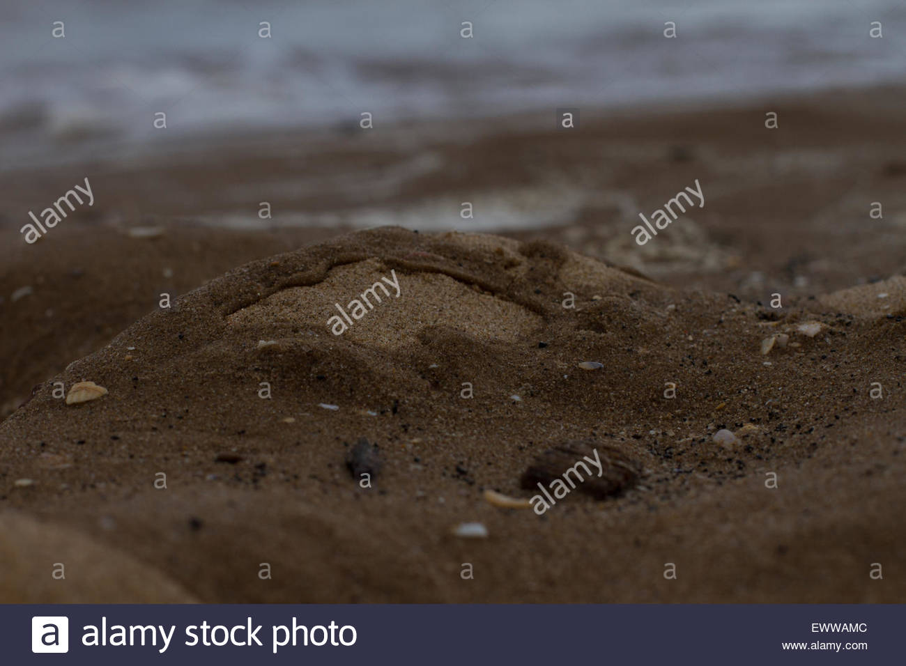 A low depth of field shot of some sand being hit by water in Cleethorpes in the East of England - Stock Image