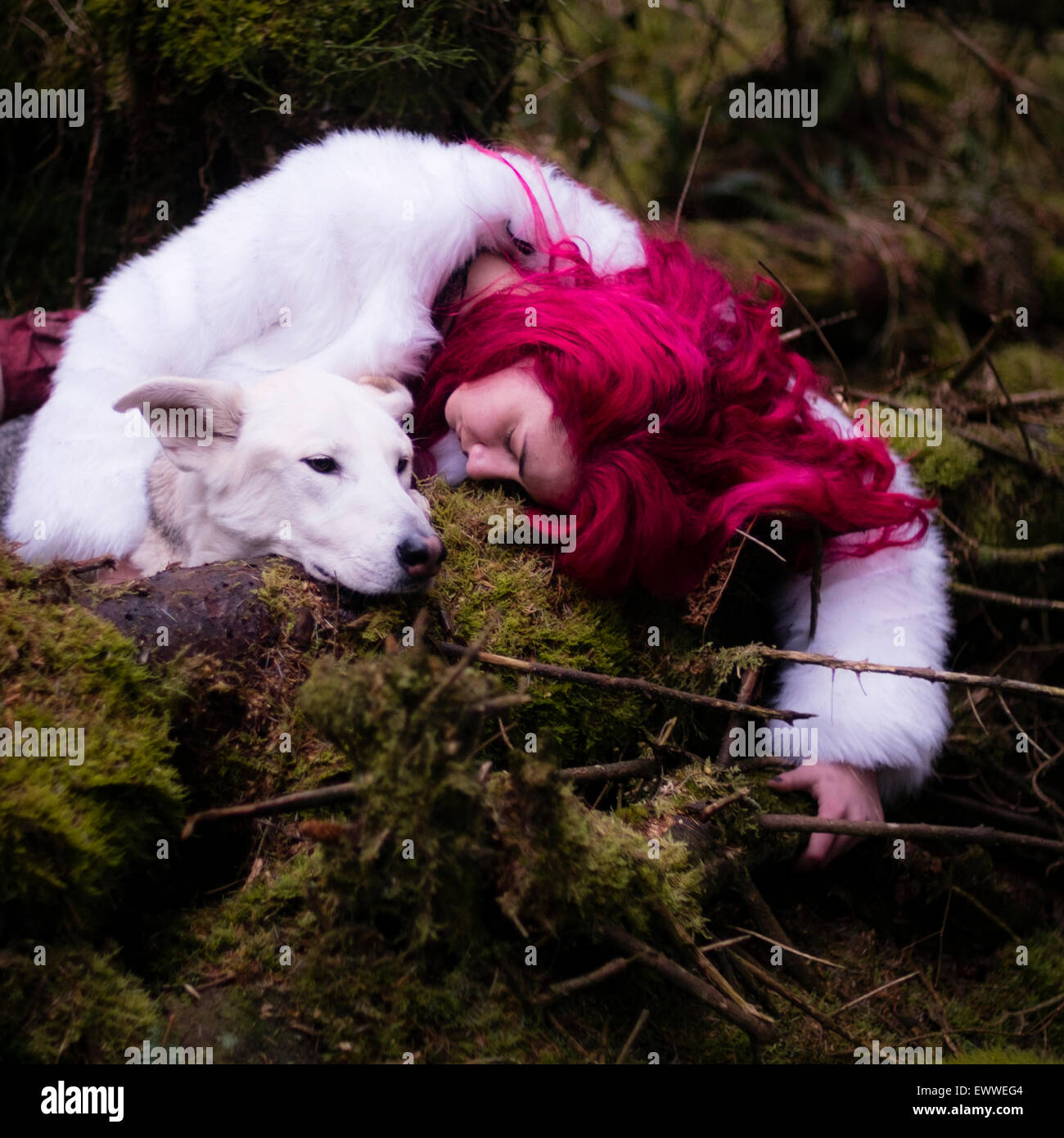 The stuff of dreams and nightmares: A young red haired caucasian woman girl alone sleeping  in a dark pine forest - Stock Image