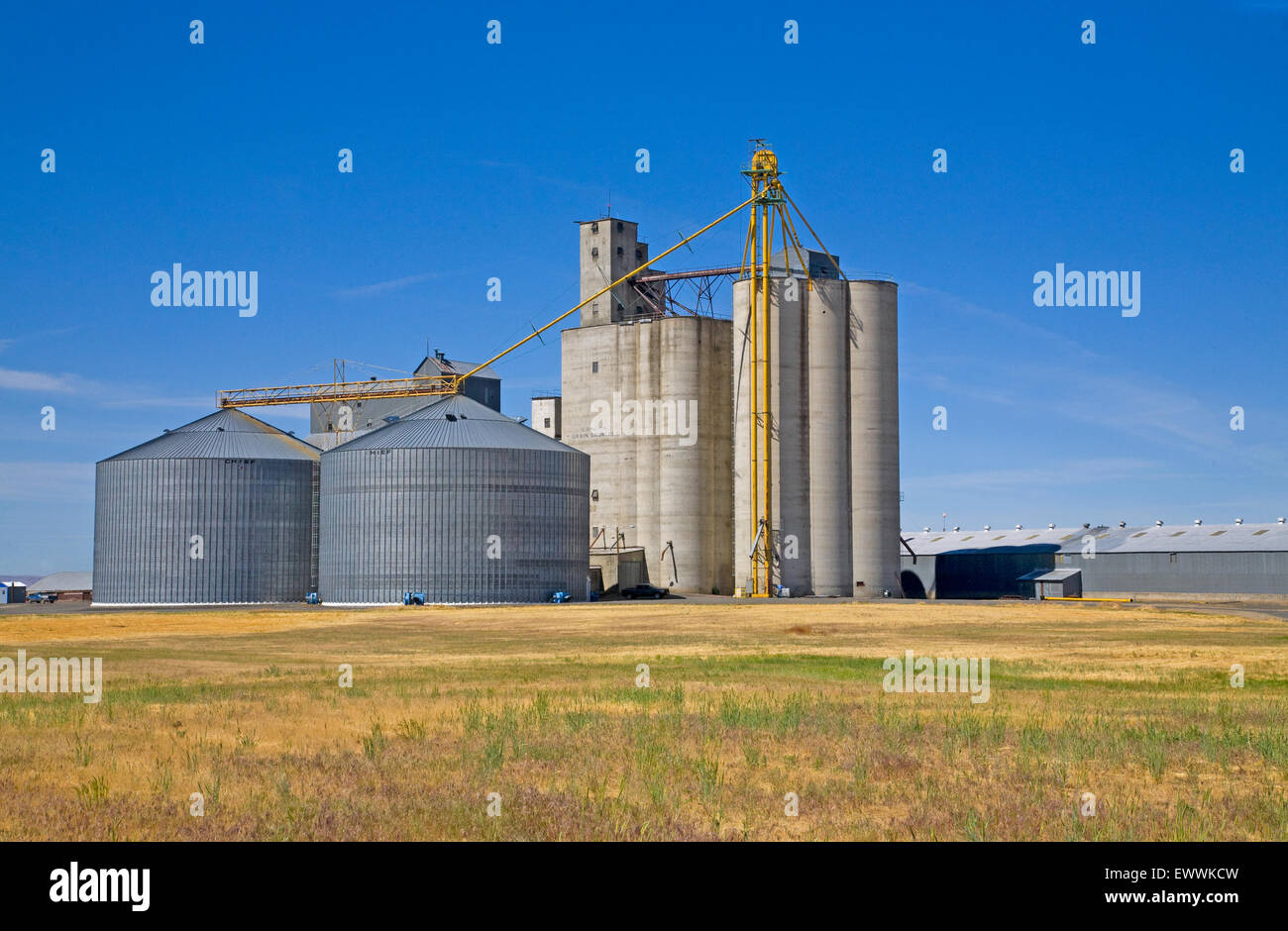 A giant storage ilo used to store wheat in condon, Oregon. - Stock Image