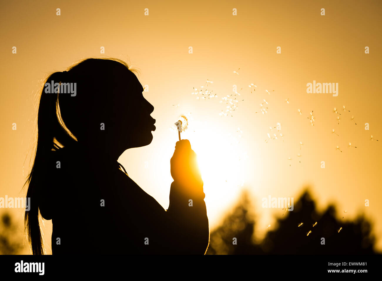 teenage girl backlit by the sun blowing a dandelion seed head, seeds catching the sunlight Copy space to the right - Stock Image