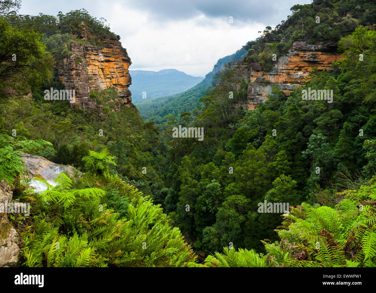 View from the top of Leura Falls - Blue Mountains National Park - NSW - Australia - Stock Image