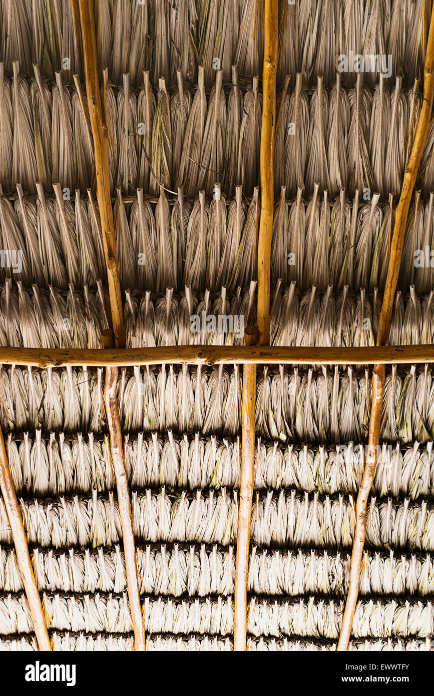 Roof thatching - Stock Image