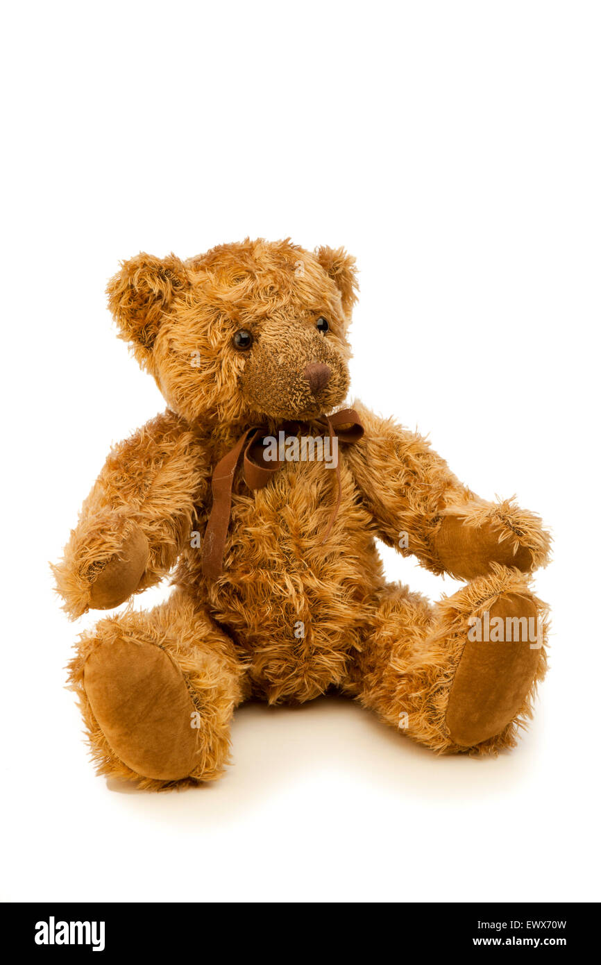 toys, child's shaggy teddy bear with brown ribbon round neck - Stock Image