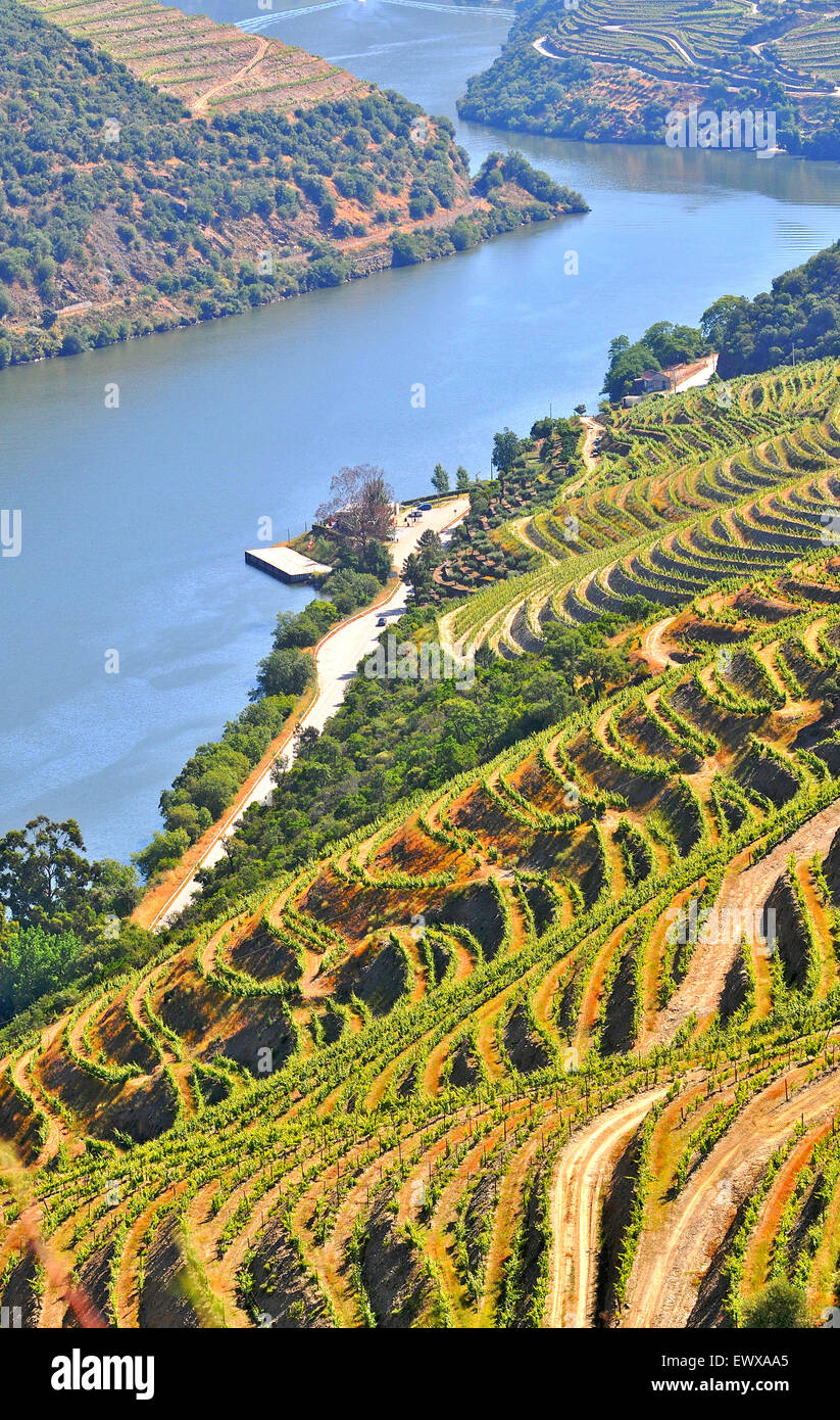 Douro valley Portugal - Stock Image