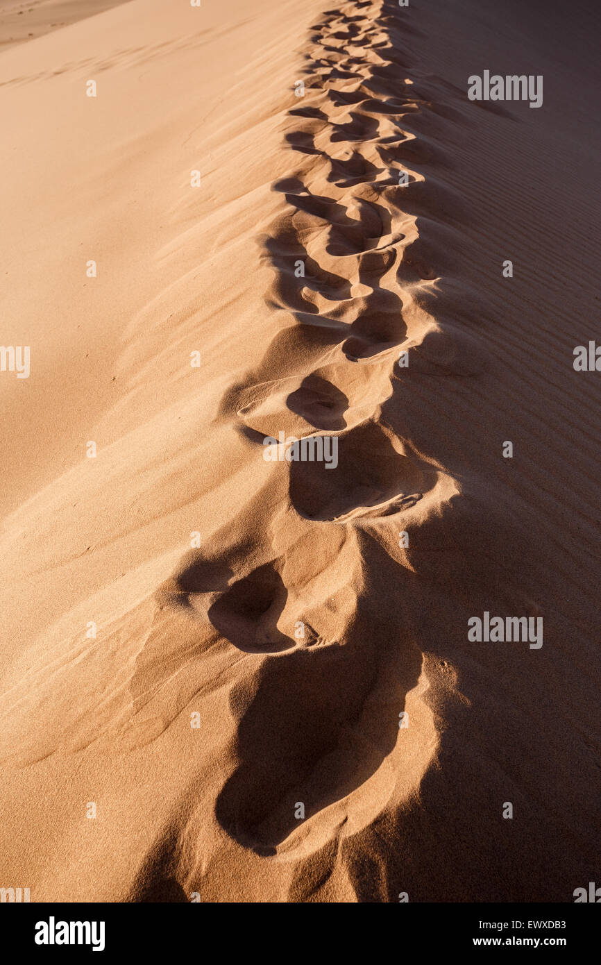 human footprints on dune in Hidden Vlei in Namib desert, best place of Namibia - Stock Image