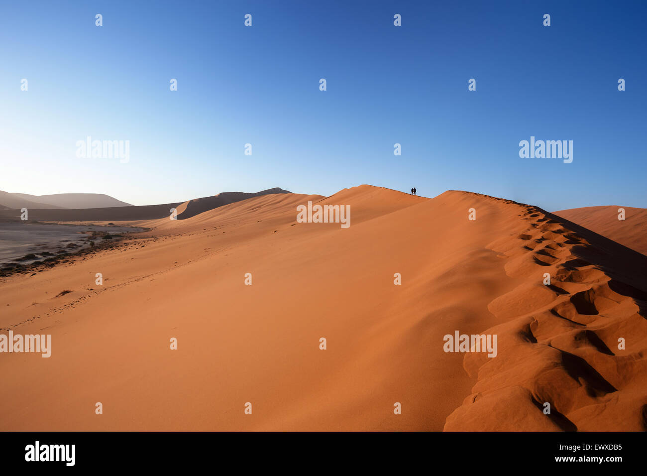 dune in Dead Vlei in Namib desert, best place of Namibia - Stock Image