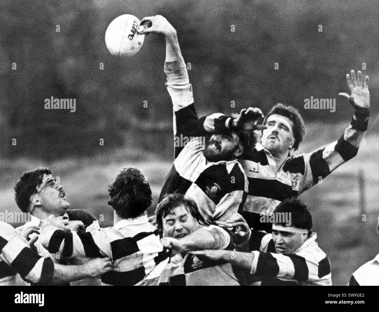 Treorchy's Keith Evans wins line-out possession from Cardiff's Welsh international Bob Norster. 15th November - Stock Image