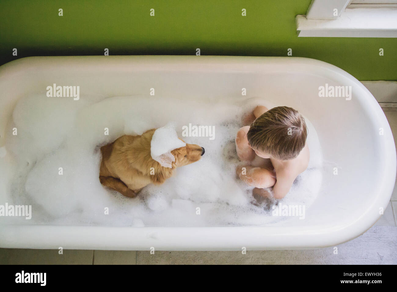 Boy and dog sitting in bathtub - Stock Image
