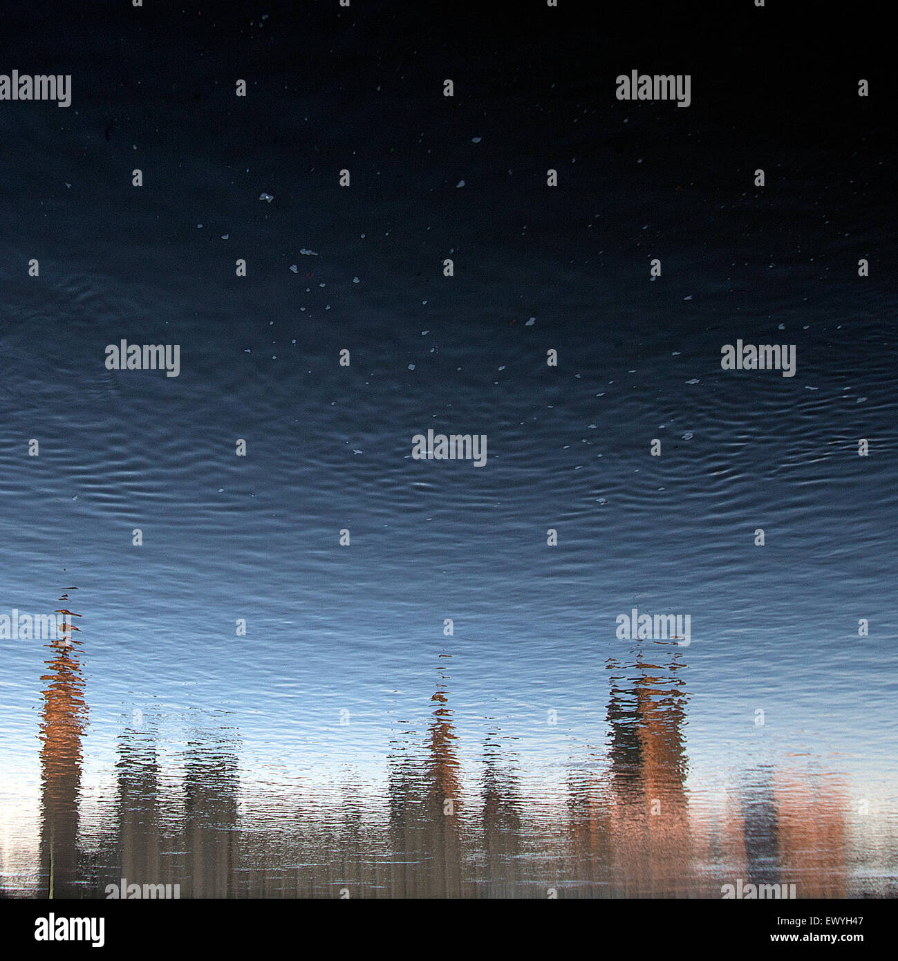 Reflection of Big Ben in the river Thames, London, UK - Stock Image