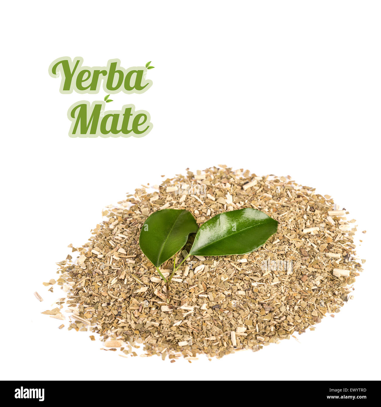 Yerba Mate, dry mixture of crushed leaves and stems of the plant on white background - Stock Image