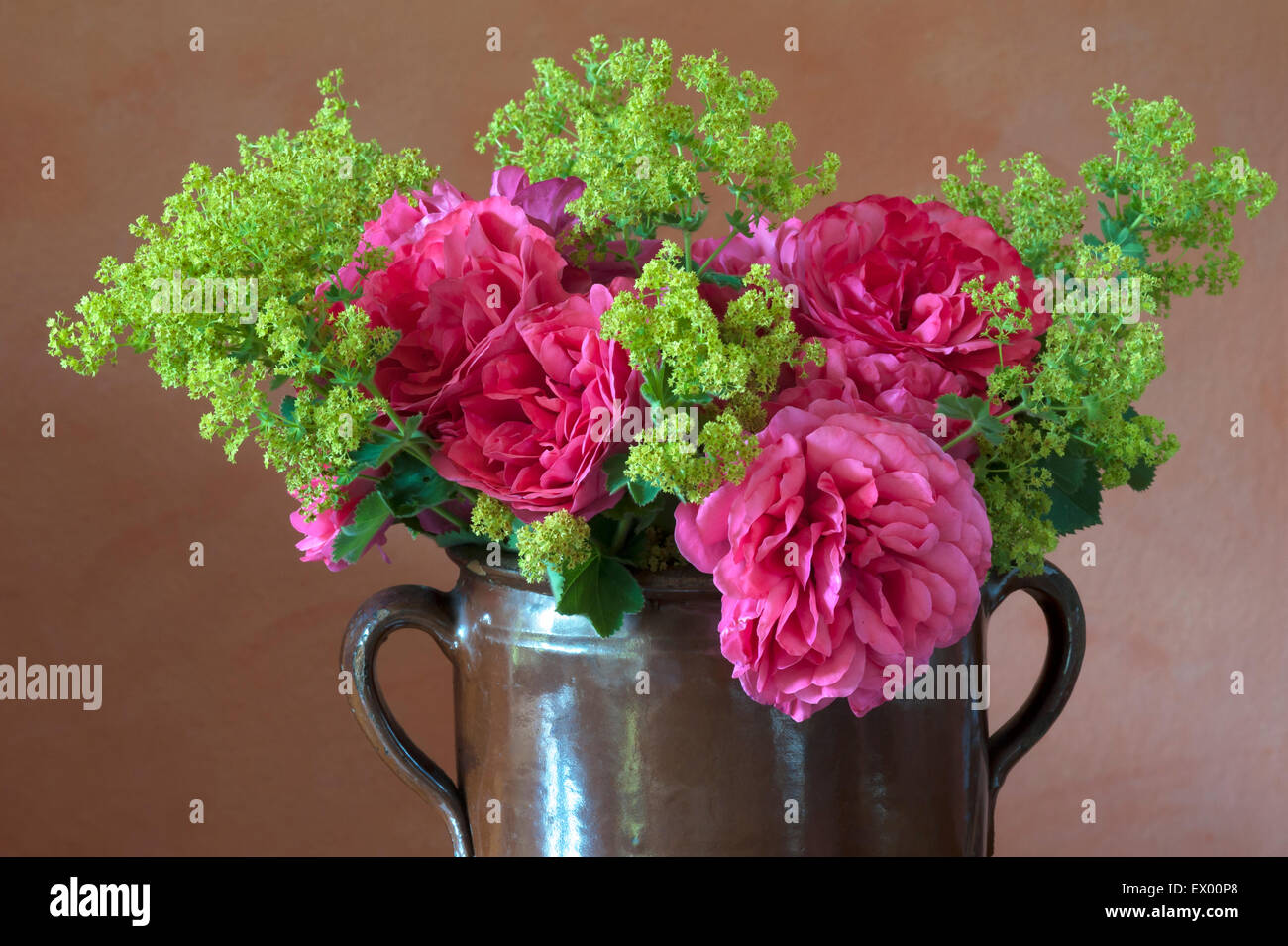 Bouquet in clay jug on table cariona rose rosa sp and ladys bouquet in clay jug on table cariona rose rosa sp and ladys mantle alchemilla sp izmirmasajfo Images