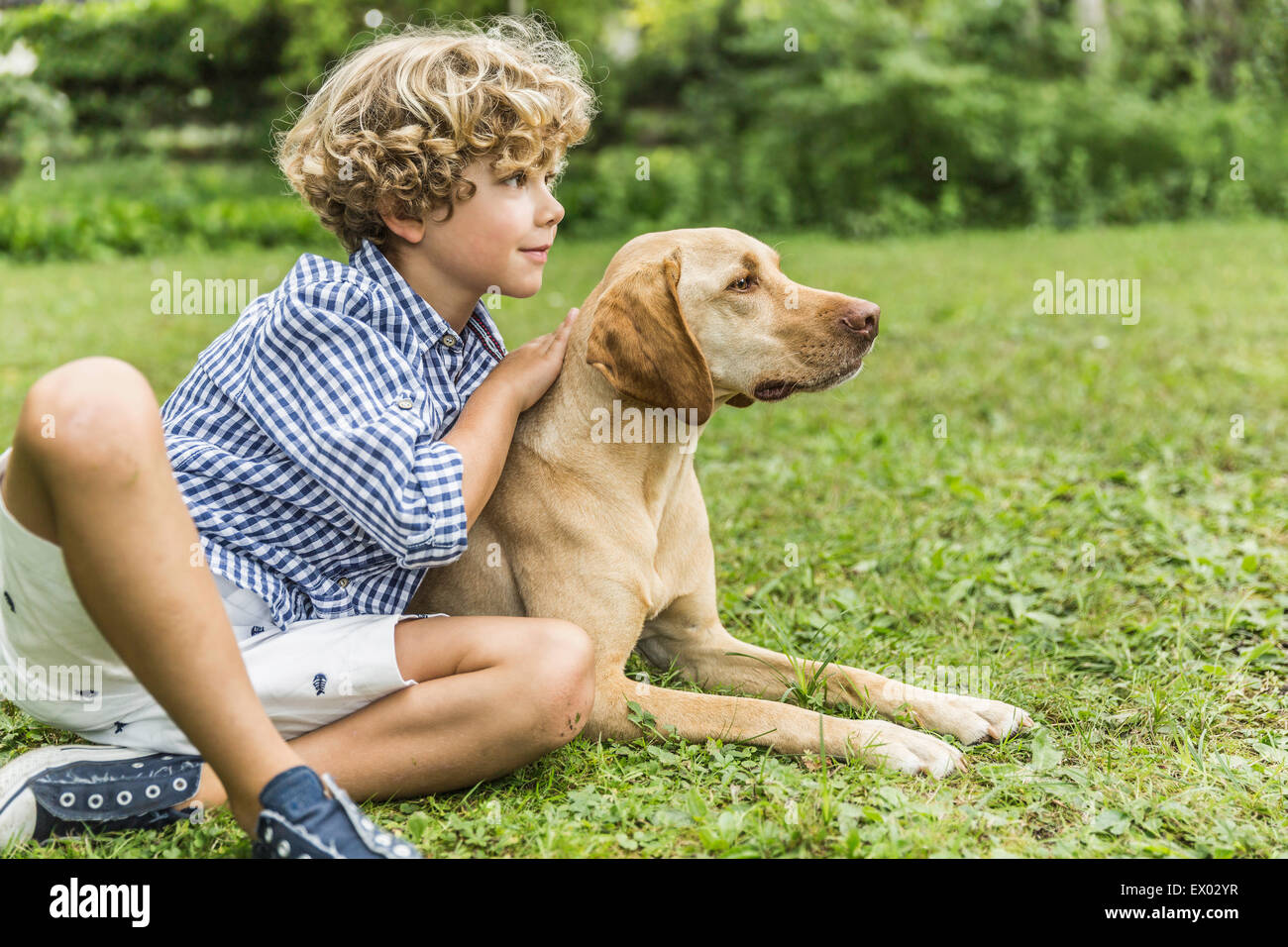 Portrait of boy sitting petting dog in garden - Stock Image