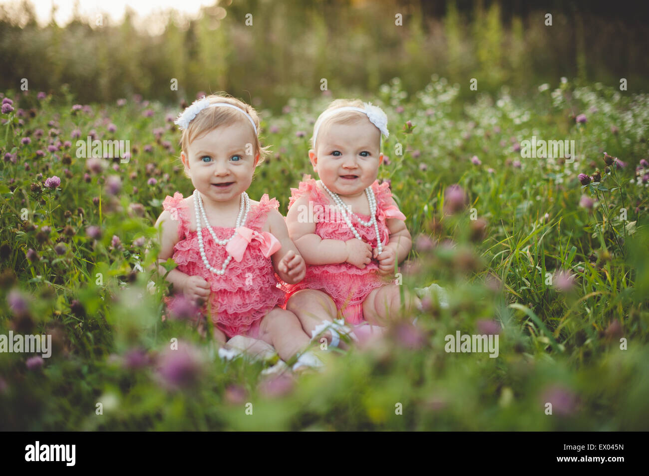 Portrait of baby twin sisters sitting in wild flower meadow wearing pink party dresses - Stock Image