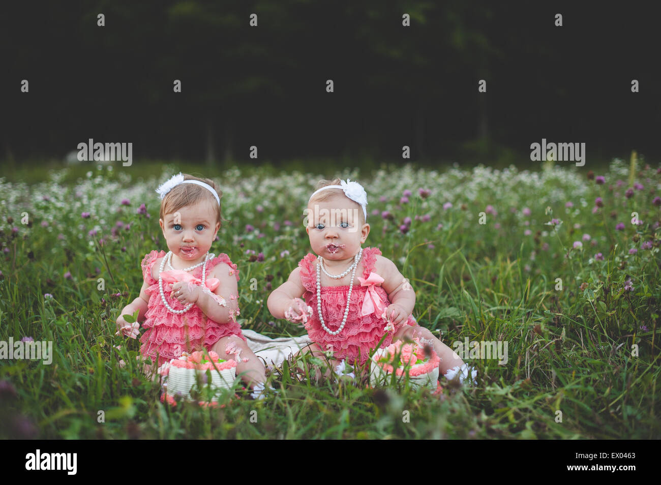 Portrait Of Baby Twin Sisters Sitting In Wildflower Meadow Eating Birthday Cake