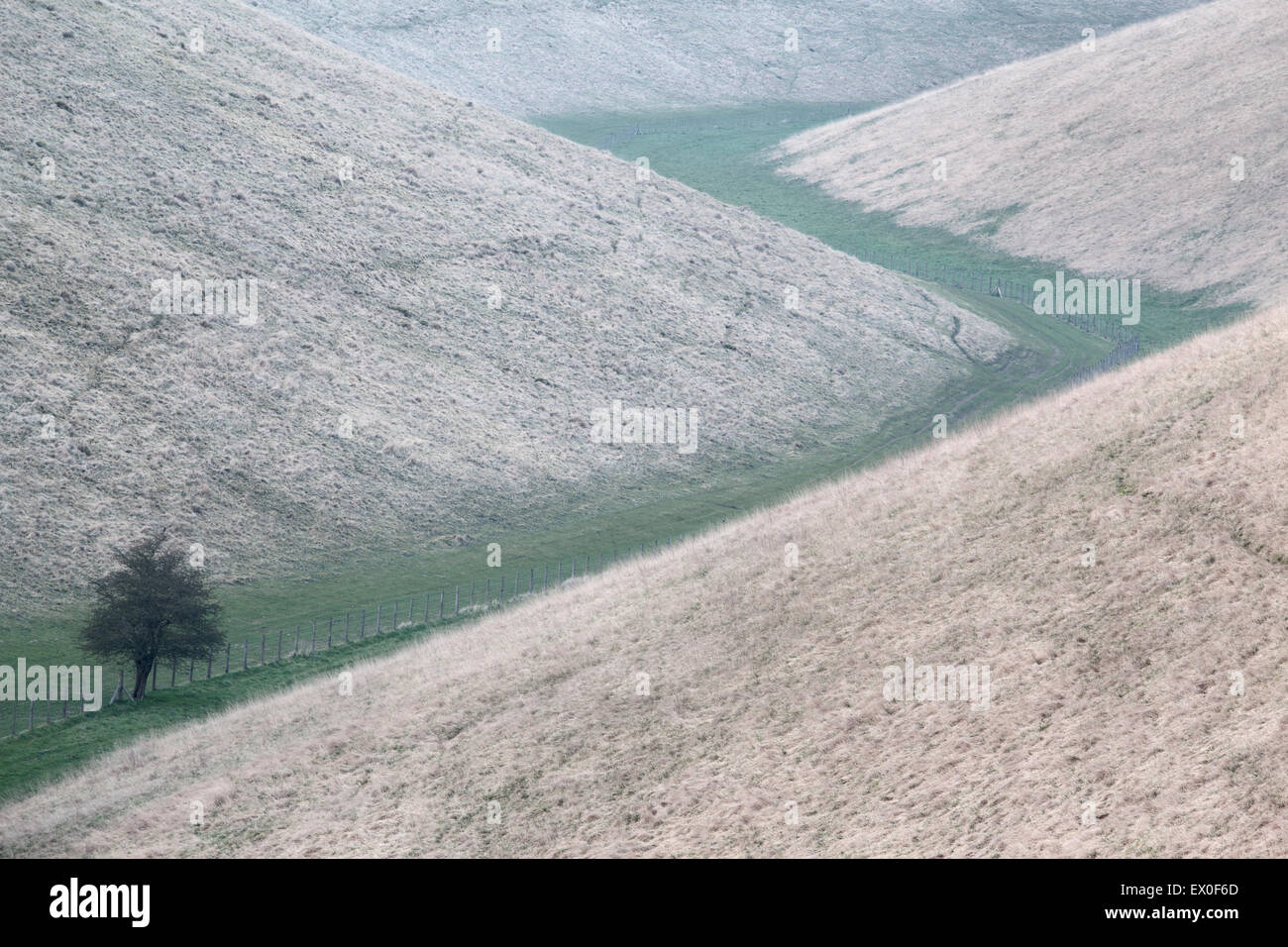 Zigzagging footpath through a valley in the Yorkshire Wolds, East Yorkshire, UK - Stock Image
